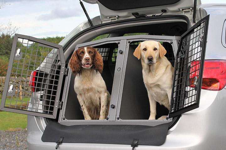 tips-para-viajar-mascotas-evitar-accidentes-caja-transportadora